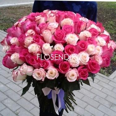 101 малиновая и розовая роза